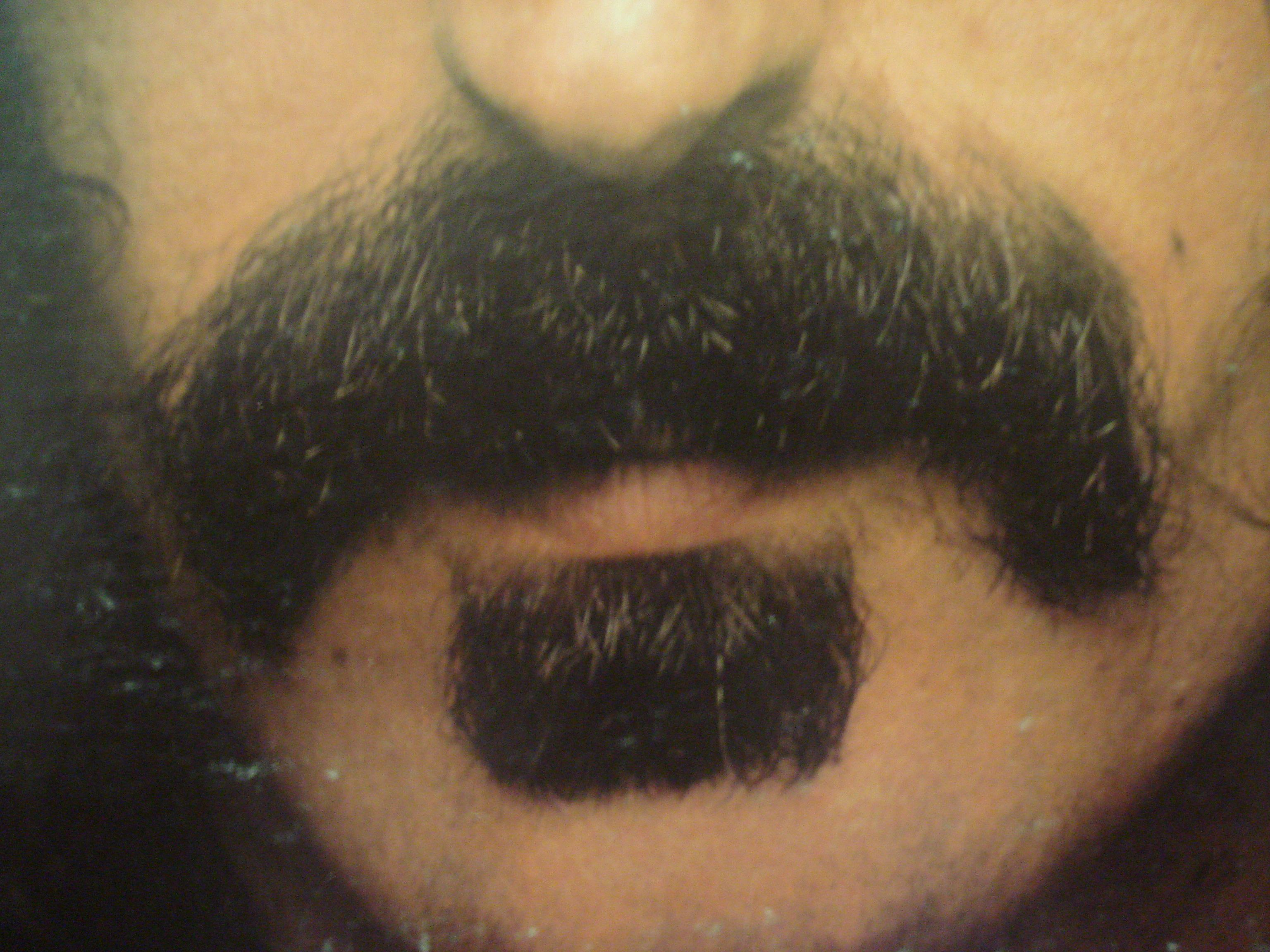 zappa beard - photo #16